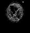 csps-logo